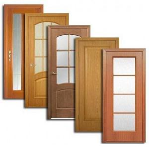 Двери, дверные блоки Дорогобужа