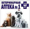 Ветеринарные аптеки в Дорогобуже